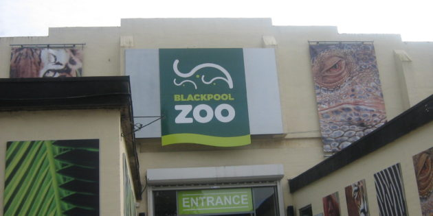 Blackpool Zoo set to welcome landmark visitor